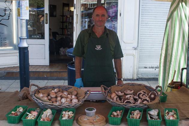 Moreton Mushrooms